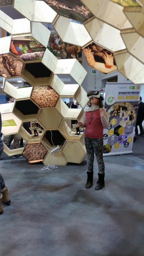 Im Inneren bekam man eine VR-Brille und konnte sich in einem Bienenvolk oder auf einem Flugbrett eines Bienenstandes umschauen.