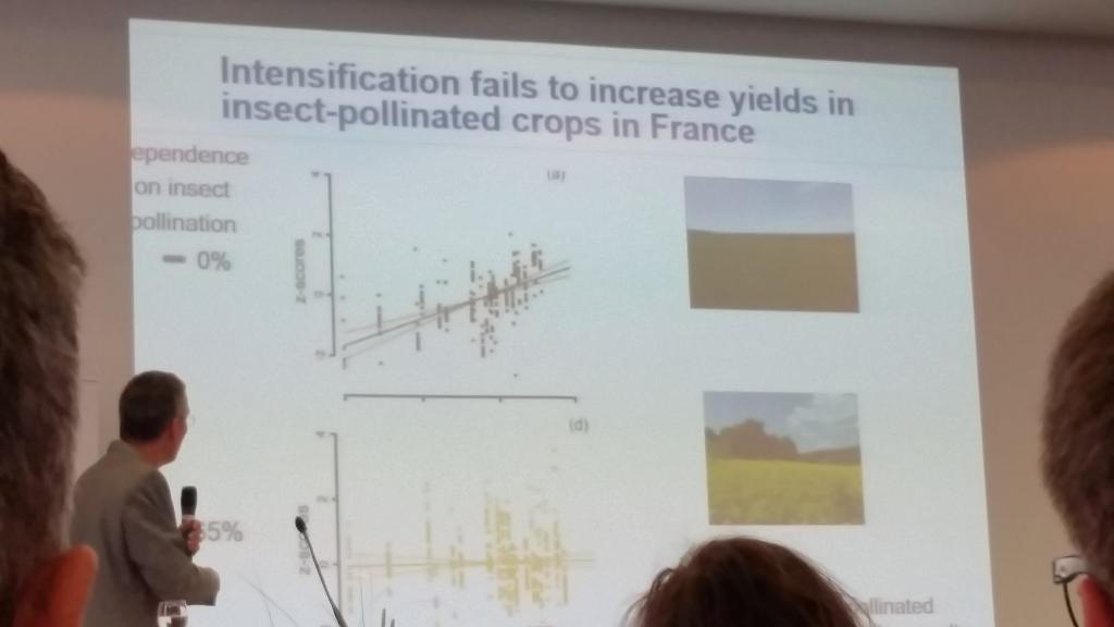Prof. Steffen-Dewenter zeigte auf, wie sich die Landschaft verändert und wie wenig die Intensivierung eigentlich noch bringt.<br />