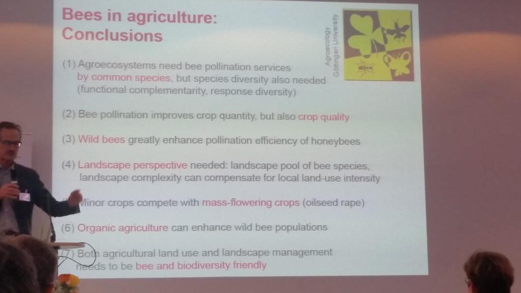 Das Resumée: unterbrochene Strukturen mit Biodiversitäts-Zentren zahlen sich auch für den Landwirt aus!