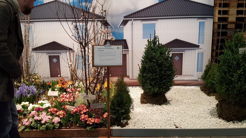 """Die naturfeindlichen """"Steingärten"""" aus Kies auf Wuzelschutzvlies wurden thematisiert und kritisiert"""