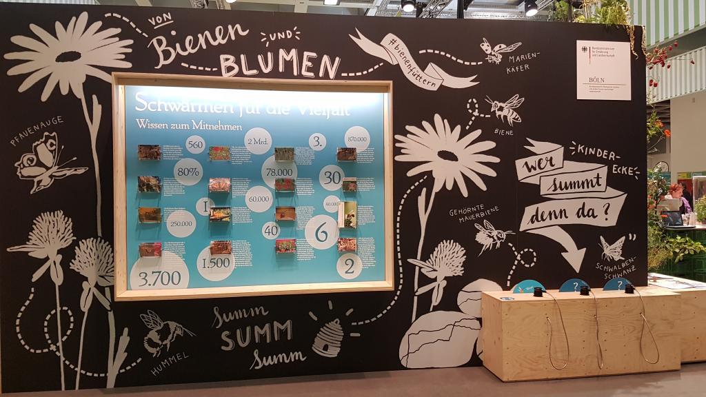 Eine schöne Info-Wand mit Postkarten mit Insektenschutztipps.