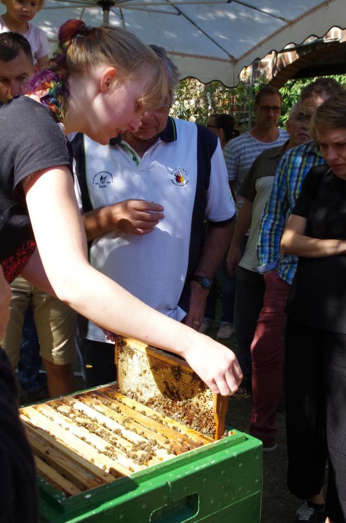 Natürlich geht es auch an die Bienen - eine Mitarbeiterin zeigt ein Volk.