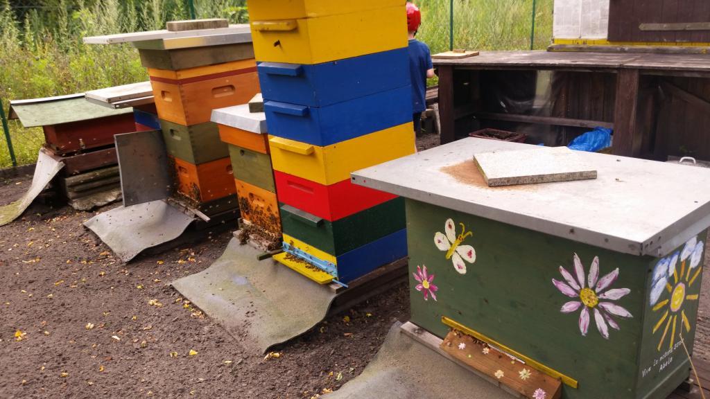 ...Einraumbeuten, Bienenkiste, Warré & Co.