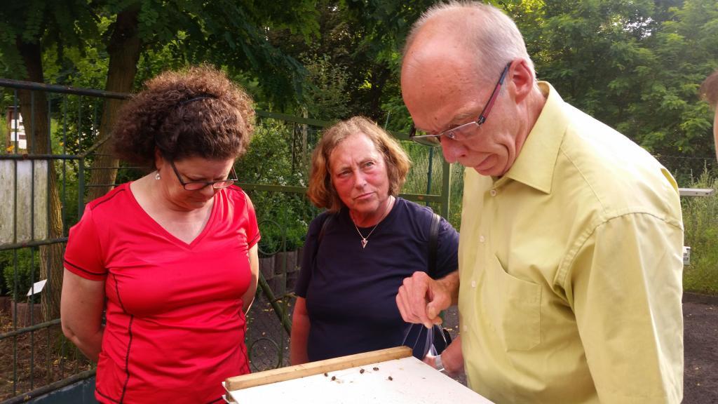 Zwei Jahre lernen die Anfänger hier bei regelmäßigen Treffen an ihren Bienen...Varroakontrolle gehört dazu!