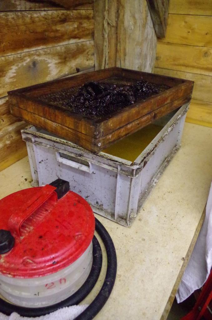 <strong>Nach ca. 2 Stunden sind die Waben geschmolzen. Der Trester bleibt auf dem Gitter, das Wachs schwimmt darunter auf einem Sud aus Honig, Wasser und Pollen. Erkaltet wird der Wachsblock unten abgekratzt.</strong>